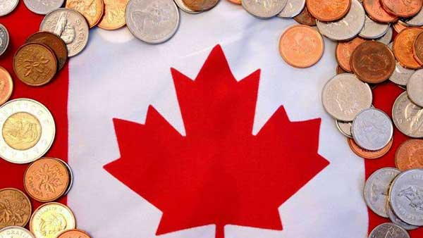 Canada's economy slowed in the third quarter
